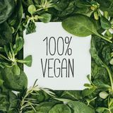 100 percent vegan inscription on white card and wet. Green leaves Royalty Free Stock Images