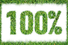 100 percents symbol green grass isolated Stock Photos