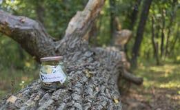 Perception d'argent dans un pot en verre pour l'aventure Photo stock