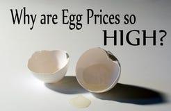 Perché sono i prezzi dell'uovo così ELEVATI con il fondo rotto delle coperture dell'uovo fotografie stock libere da diritti