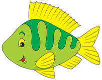Perch. Vector clip-art / children's illustration for your design Royalty Free Stock Images