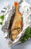 Perch baked in foil with parsley Stock Photography