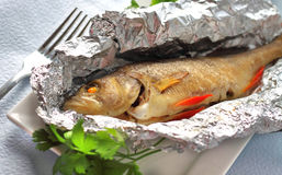 Perch baked in foil with parsley Royalty Free Stock Images