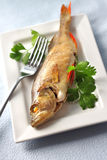 Perch baked in foil Stock Images