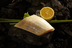 Perch fillet Royalty Free Stock Image