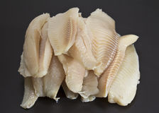 Perch fillet Stock Photos