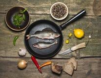 Perch fish Stock Image