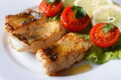 Perch fried fillet with vegetables. Horizontal close-up Royalty Free Stock Photography