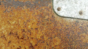 Perched on a rusty steel plate. Perched on a rusty steel plate outside the building Royalty Free Stock Photo
