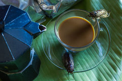 Percolator  and coffee with cicada Royalty Free Stock Image