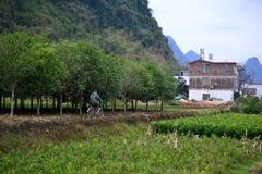 Percorsi in bicicletta e ciclare ai villaggi intorno a Yangshuo, Guilin, il Guangxi con il bello paesaggio di morfologia carsica  fotografie stock libere da diritti