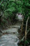Percorso al dolmen in mezzo alla foresta Fotografie Stock Libere da Diritti