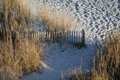 Percorso alla spiaggia fotografia stock
