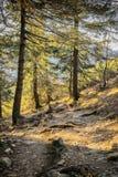 Percorso in alpi bavaresi Fotografie Stock