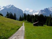 Percorso ambulante nelle alpi svizzere Fotografia Stock Libera da Diritti