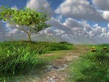 Percorso attraverso il prato verde Fotografia Stock Libera da Diritti