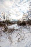 Percorso attraverso la neve Immagine Stock