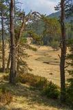 Percorso attraverso la valle alla montagna di Rhodope Fotografia Stock