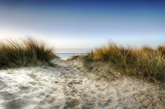 Percorso attraverso le dune Immagini Stock Libere da Diritti
