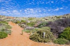 Percorso australiano della ghiaia della costa alla spiaggia Immagini Stock Libere da Diritti