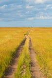 Percorso che attraversa la savanna Fotografia Stock Libera da Diritti
