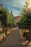 Percorso con gli alberi e sole che va verso le vecchie costruzioni a Bruges Immagini Stock