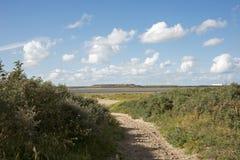 Percorso con la sabbia sulle dune olandesi al litorale Fotografie Stock