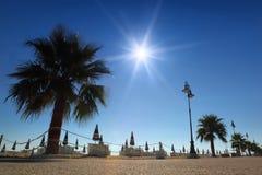 Percorso con le palme sulla spiaggia con gli ombrelli piegati fotografia stock libera da diritti