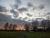 Percorso con pianamente il tramonto aperto del cielo degli alberi del paese della pianura drammatico Fotografia Stock