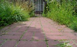 Percorso concreto del ciottolo rosso con erba immagini stock libere da diritti