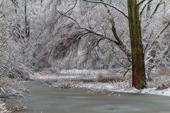 Percorso congelato. Fotografia Stock Libera da Diritti