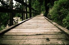 Percorso d'escursione di legno nel parco Fotografia Stock Libera da Diritti