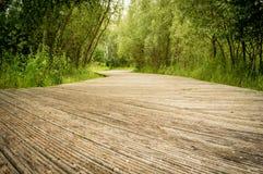Percorso d'escursione di legno nel parco Fotografia Stock