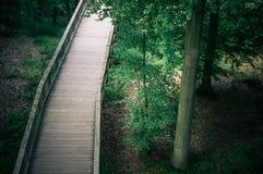 Percorso d'escursione di legno nel parco Fotografie Stock Libere da Diritti