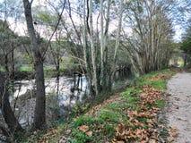 Percorso dal fiume Krka immagine stock