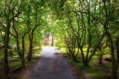 Percorso del giardino nel giardino giapponese Oregon di Portland di primavera Fotografia Stock