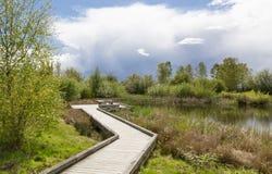 Percorso del lago Fotografia Stock Libera da Diritti