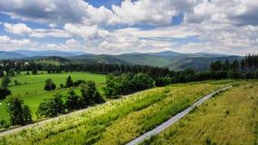 Percorso del paesaggio della montagna di Timelapse fra i campi e più forrest contro il cielo con le nuvole di estate video d archivio