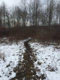 Percorso del ` s di inverno Fotografia Stock
