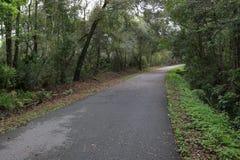 Percorso della bici subito dopo pioggia e tropicale fotografia stock