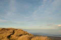 Percorso della duna di sabbia Fotografie Stock Libere da Diritti