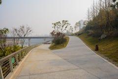 Percorso della forcella di Hillside sulla riva del fiume a mezzogiorno soleggiato di inverno fotografia stock
