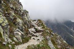 Percorso della montagna Fotografie Stock Libere da Diritti