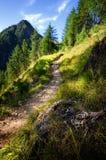 Percorso della montagna all'alba in alpi francesi Immagine Stock