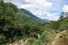Percorso della montagna con un banco Paesaggio della montagna Fotografia Stock