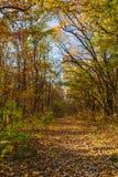 Percorso della montagna nel paesaggio di autunno Vista verticale del picchiettio della montagna immagine stock libera da diritti