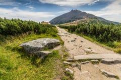 Percorso della montagna nel parco nazionale Krkonose Fotografia Stock Libera da Diritti
