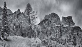 Percorso della montagna nella stagione invernale Immagini Stock Libere da Diritti