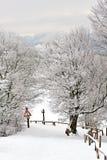 Percorso della neve Immagine Stock Libera da Diritti