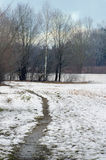 Percorso della neve di inverno Fotografia Stock Libera da Diritti